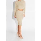 Trendy Turtleneck Long Sleeves Beige Spandex Two-piece Skirt Set