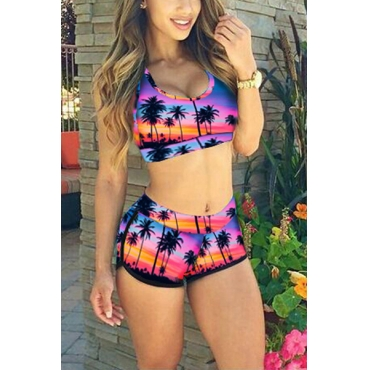 Euramerican Coconut Tree Printed Spandex Two-piece Shorts Set